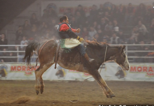 2009-03-15 - Voghera - Rodeo e Wild West Show 071